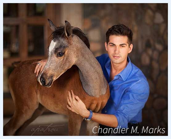 Chandler Marks and Arabian Foal - The Marks Agency