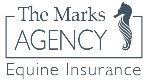 The Marks Agency, Inc.